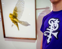 Icon Shirt by Yellow Warbler Photograph